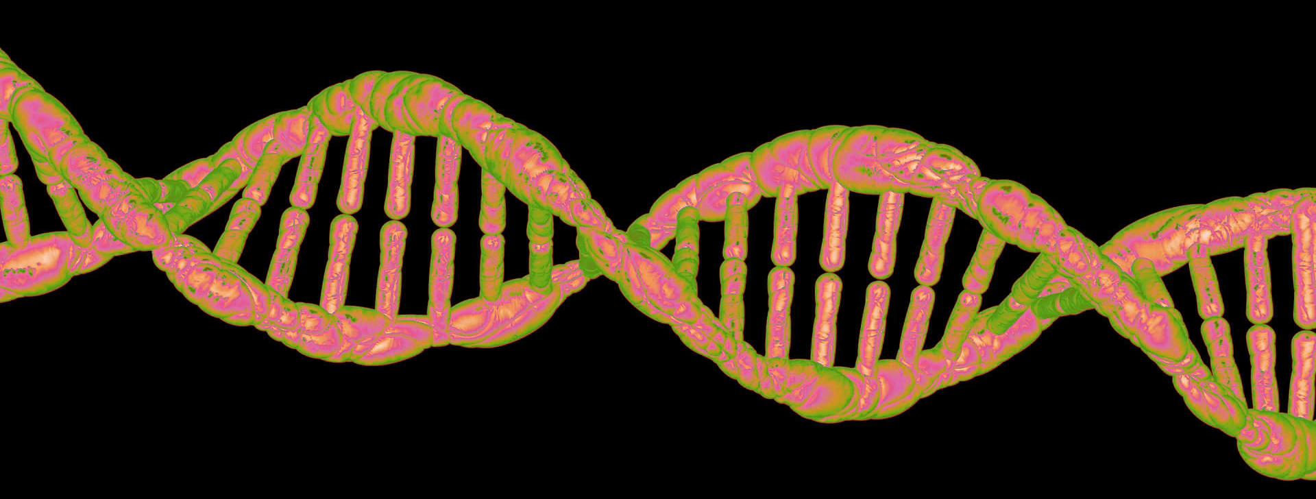 pinkgreenDNA